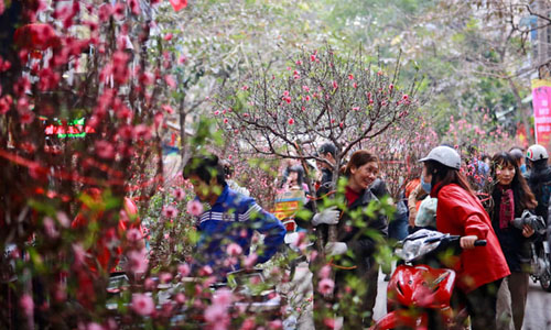 Hà Nội: Cấm đường 16 ngày liên tiếp phục vụ Tổ chức chợ Hoa Xuân năm 2020 - Ảnh 1