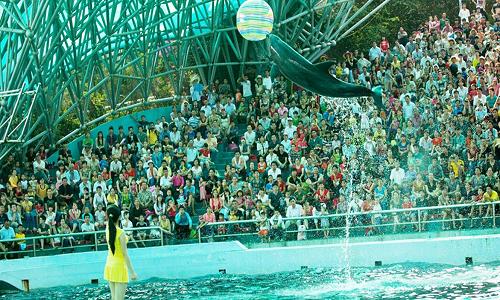 Thiên đường vui chơi giải trí bên bờ kỳ quan Tuần Châu - Hạ Long - Ảnh 1