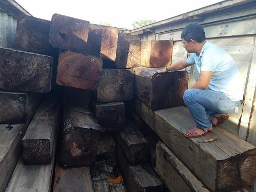 Gia Lai: CSGT bắt xe container chở hơn 40m3 gỗ lậu - Ảnh 2