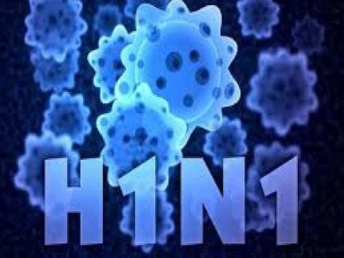 Cà Mau: Một người tử vong vì nhiễm virus cúm H1N1 - Ảnh 1