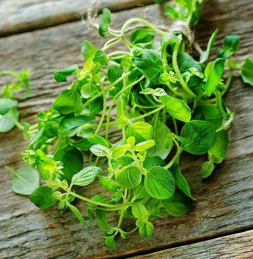 Những thực phẩm có thể loại bỏ độc tố, giúp lá phổi khỏe từ trong ra ngoài - Ảnh 4