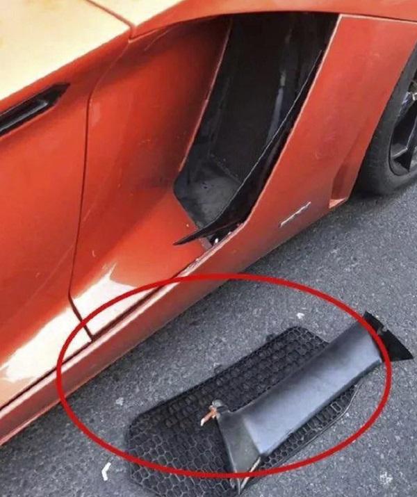 Chú chó gây tai nạn cho siêu xe Lamborghini triệu đô và cái kết bất ngờ - Ảnh 2