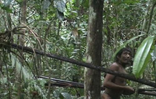 Bộ lạc nguyên thuỷ ở rừng rậm Amazon có nguy cơ biến mất vĩnh viễn vì người hiện đại - Ảnh 1