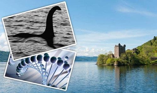 Bí ẩn ngàn năm về quái vật hồ Loch Ness: Các nhà khoa học vào cuộc  - Ảnh 1