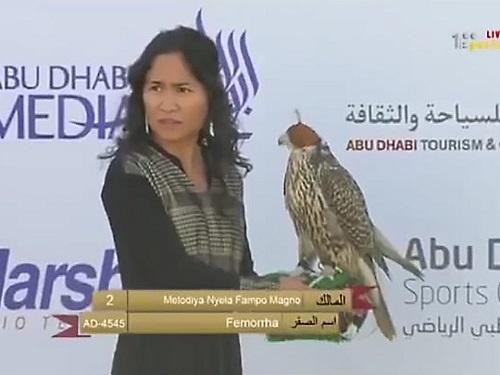 Huấn luyện chim ưng: Nghề kiếm ra hàng triệu USD ở Trung Đông - Ảnh 10
