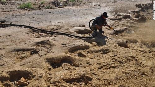 Phát hiện dấu chân khủng long khổng lồ từ 95 triệu năm trước - Ảnh 1