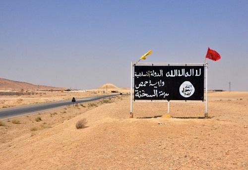 Tình hình Syria mới nhất ngày 22/4: Lính đánh thuê Afghanistan hồi hương, IS trỗi dậy  - Ảnh 3