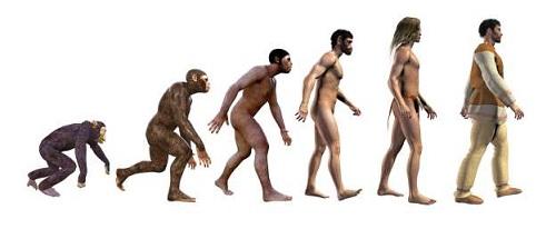 Tiết lộ lý do thực sự khiến nhân loại bắt đầu di chuyển bằng hai chân - Ảnh 1