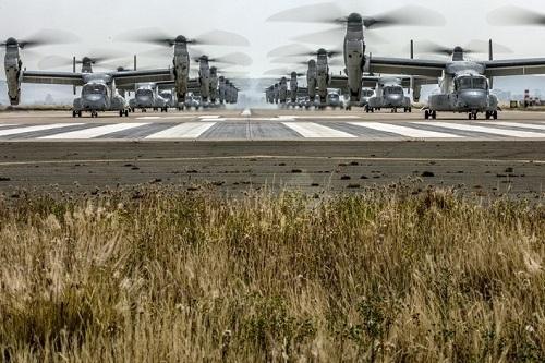 43 trực thăng quân sự Mỹ phô diễn sức mạnh trong cuộc tập trận 'Voi đi bộ' - Ảnh 3