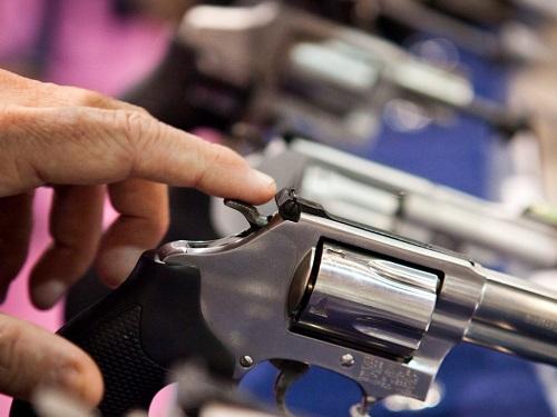 Bao nhiêu người Mỹ đang sở hữu súng? - Ảnh 5