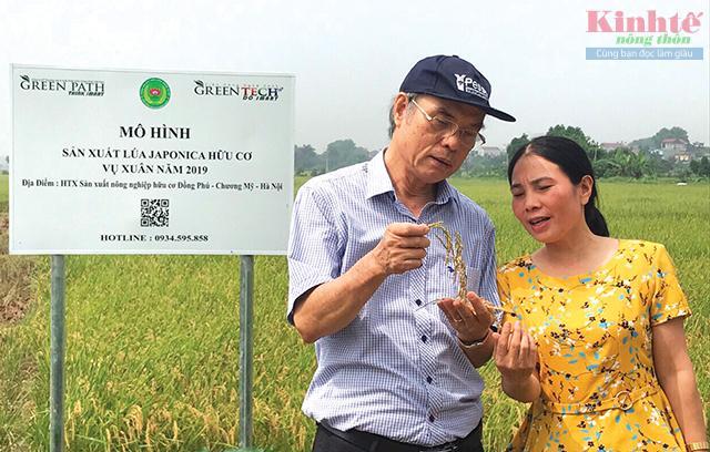 Về mô hình mở đường cho kinh tế hợp tác phù hợp với  trình độ của kinh tế hộ nông dân - Ảnh 4