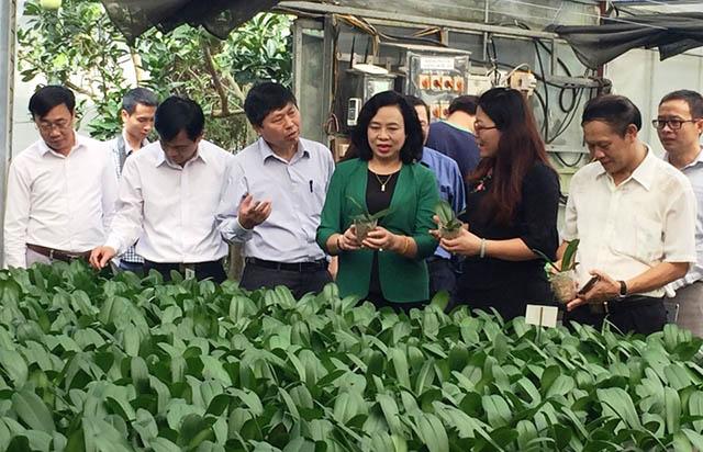 Về mô hình mở đường cho kinh tế hợp tác phù hợp với  trình độ của kinh tế hộ nông dân - Ảnh 5