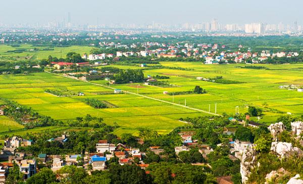 Xây dựng Nông thôn mới theo tư tưởng Chủ tịch Hồ Chí Minh - Ảnh 2
