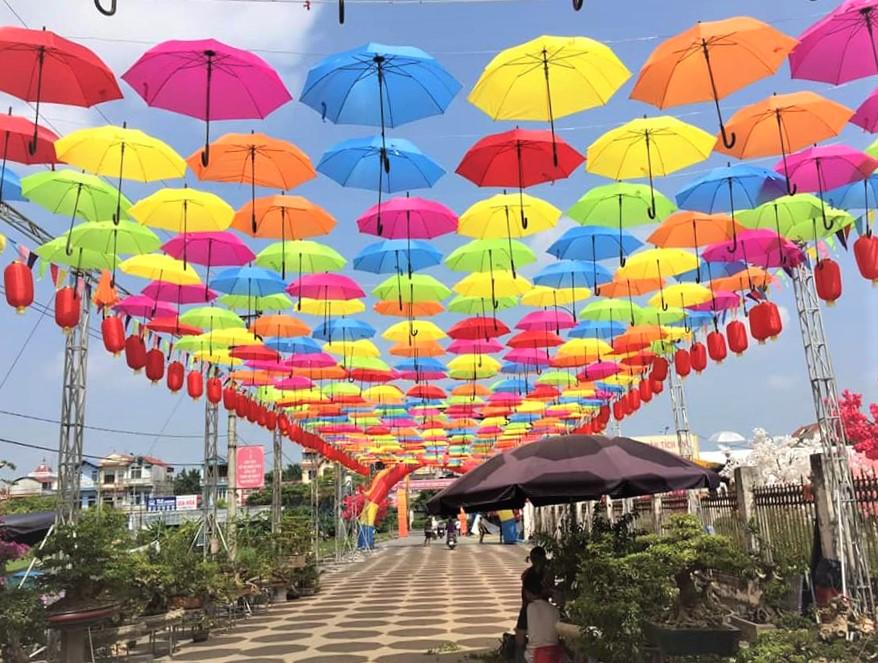 Triển lãm Sinh Vật Cảnh huyện Phúc Thọ (Hà Nội): Nơi hội tụ tinh hoa cây cảnh Việt - Ảnh 12