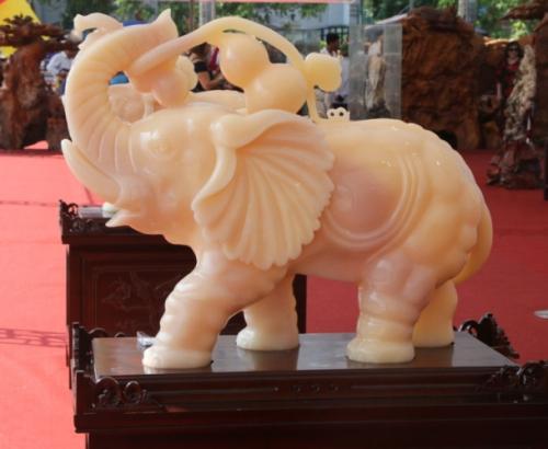 Khai mạc Festival cây cảnh – đá quý – đá phong thủy - Ảnh 11