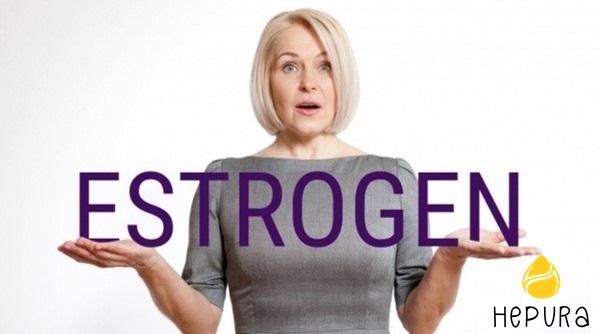 Các loại thuốc nội tiết tố nữ estrogen - Ảnh 4