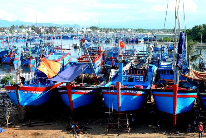 Vì sao nhiều công ty gặp khó trong bán bảo hiểm tàu cá? - Ảnh 1