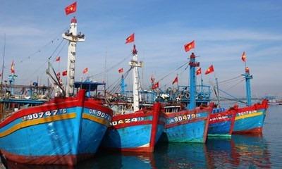 Tranh chấp Cảng thủy nội địa Phú Thái dưới góc nhìn pháp lý - Ảnh 2