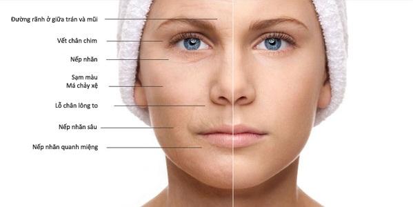 Collagen có tác dụng gì trong làm đẹp? - Ảnh 2