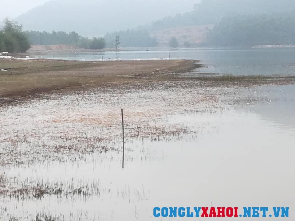 Doanh nghiệp lấp hồ làm dự án ở Vĩnh Phúc: Dừng thi công để xác định lại mốc giới - Ảnh 3