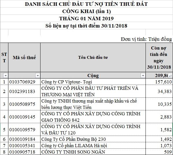 Hà Nội: Công ty CP Viptour - Togi dẫn đầu danh sách nợ thuế - Ảnh 1