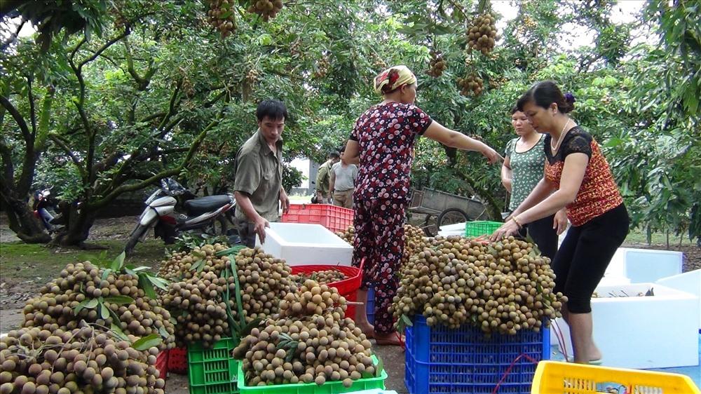 Xã Bình Kiều (Khoái Châu, Hưng Yên): Tích cực hoàn thiện, cán đích nông thôn mới - Ảnh 1