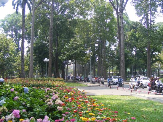 TP Hồ Chí Minh phấn đấu trở thành một thành phố xanh - Ảnh 1