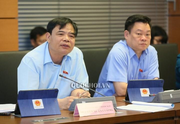 Bộ trưởng Bộ NNPTNT Nguyễn Xuân Cường trình bày về tác động của dịch tả lợn châu Phi - Ảnh 1