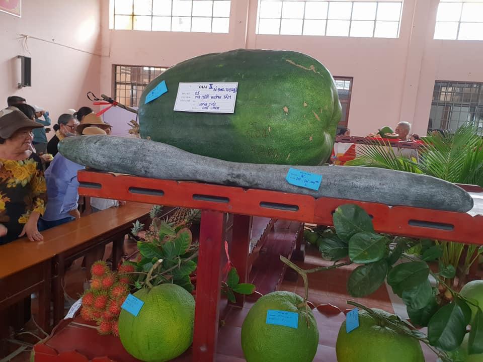 Hội chợ Nông nghiệp và sản phẩm OCOP khu vực Đồng bằng sông Cửu Long 2019 - Ảnh 3