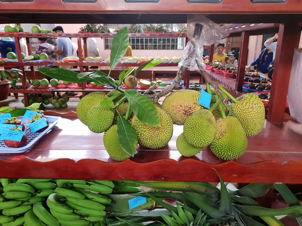Hội chợ Nông nghiệp và sản phẩm OCOP khu vực Đồng bằng sông Cửu Long 2019 - Ảnh 5