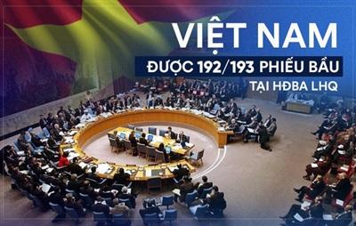 Cộng đồng quốc tế tin tưởng vào vị thế, vai trò và uy tín của Việt Nam tại LHQ - Ảnh 1