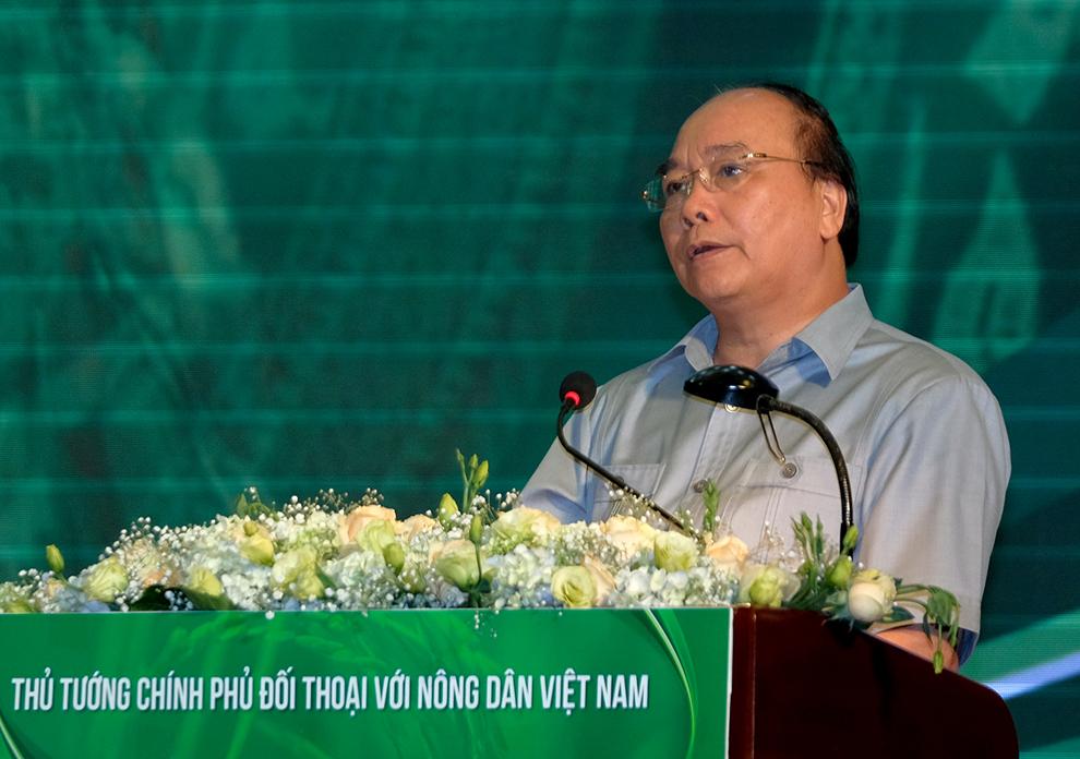 Tăng cường đầu tư vào nông nghiệp hiệu quả, an toàn và bền vững - Ảnh 1