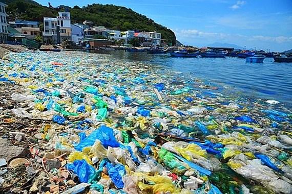 Rác thải nhựa hiểm họa đối với sự sống của con người - Ảnh 1