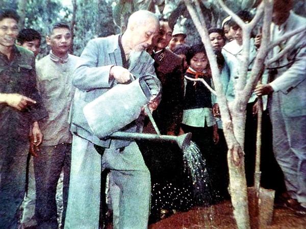 Chủ tịch Hồ Chí Minh với sự nghiệp Trồng cây và Trồng người - Ảnh 3