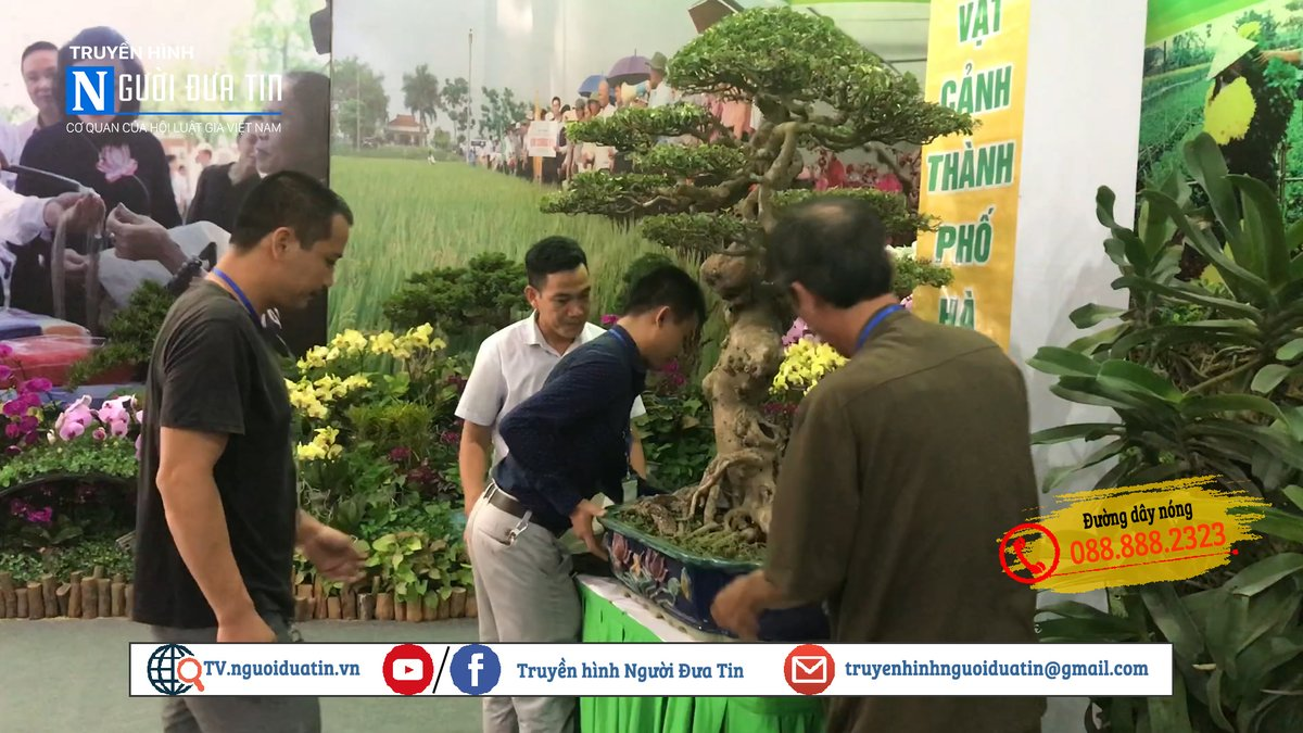 Hà Nội: Công tác chuẩn bị Tổng kết 10 năm thực hiện chương trình mục tiêu Quốc gia về xây dựng Nông thôn mới - Ảnh 6