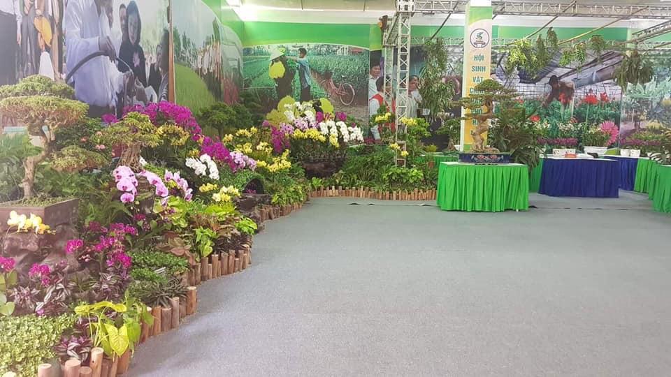 Hà Nội tiếp tục xây dựng vùng nông thôn xanh, sạch, đẹp, một miền quê đáng sống - Ảnh 5