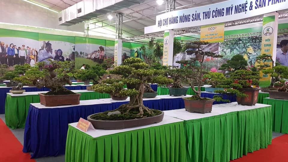 Hà Nội tiếp tục xây dựng vùng nông thôn xanh, sạch, đẹp, một miền quê đáng sống - Ảnh 7