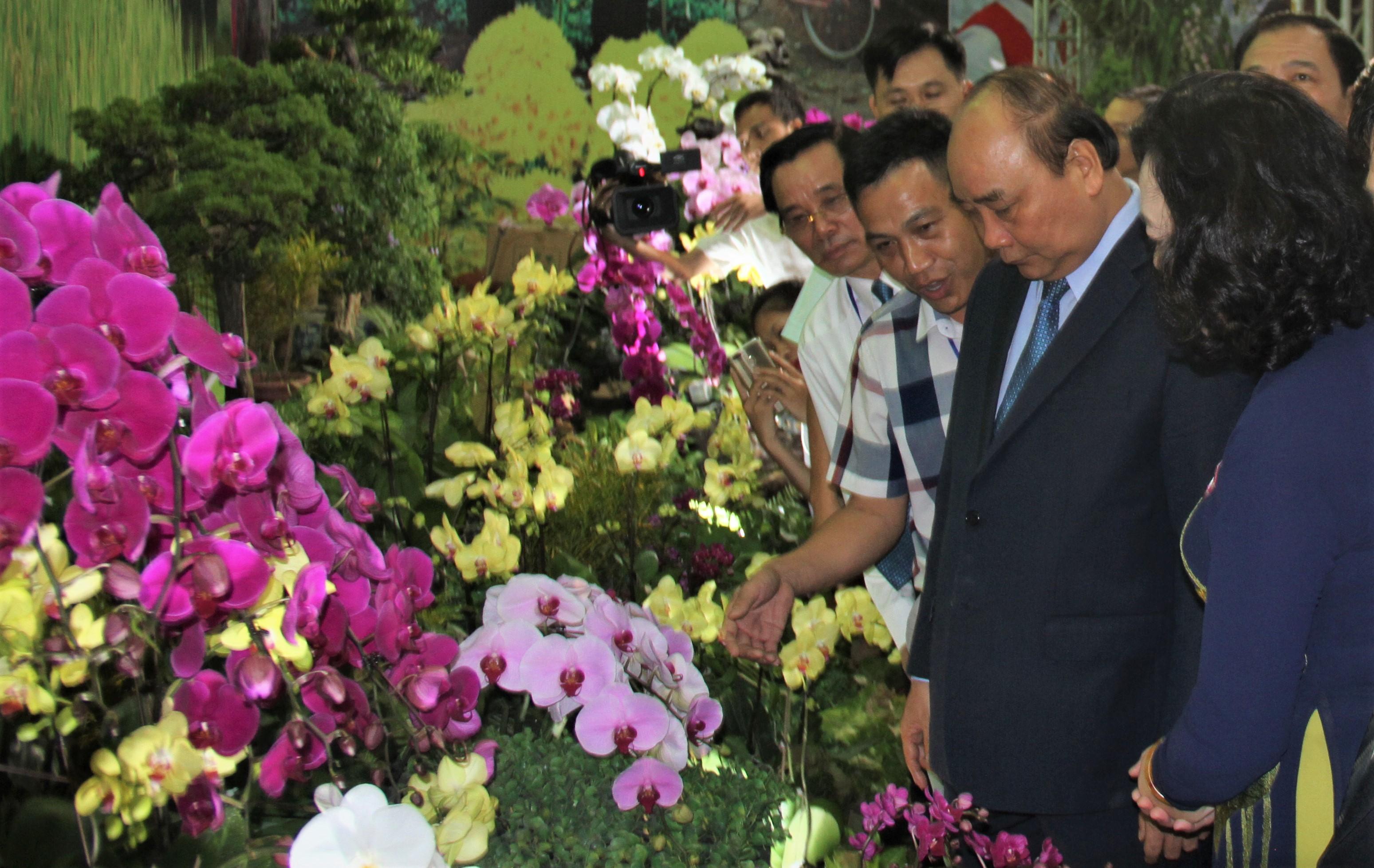 Hà Nội tiếp tục xây dựng vùng nông thôn xanh, sạch, đẹp, một miền quê đáng sống - Ảnh 4