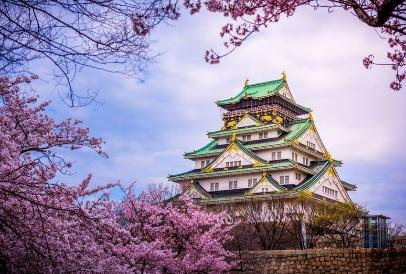Tour Nhật Bản - Ngắm hoa anh đào dịp tết canh tý 2020 - Ảnh 5