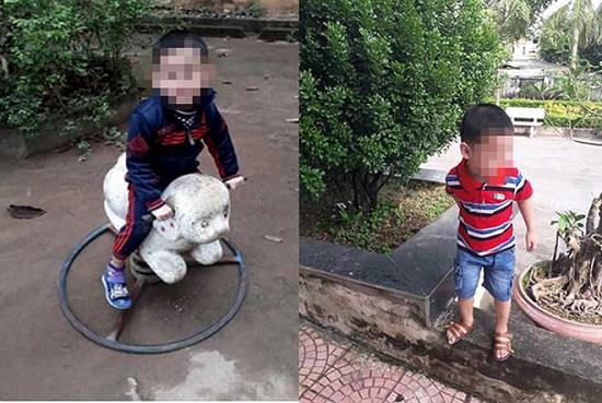 Tích cực tìm kiếm bé trai 4 tuổi mất tích khi chơi cùng bà ở Vĩnh Phúc - Ảnh 1