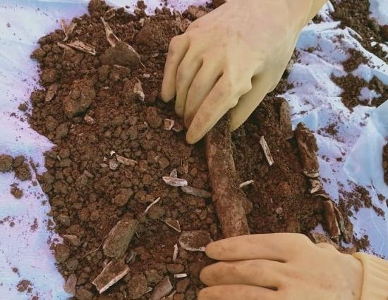 Đào đất làm đường, bất ngờ phát hiện 2 hài cốt liệt sĩ kèm nhiều di vật - Ảnh 1
