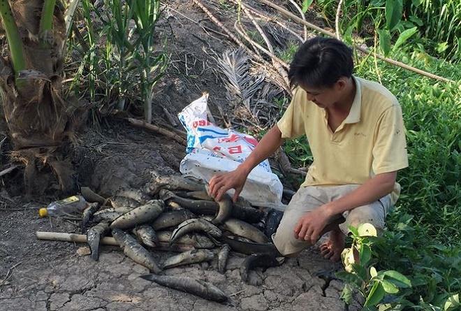 Hậu Giang: Sông ô nhiễm, người dân điêu đứng vì thiếu nước sạch - Ảnh 1