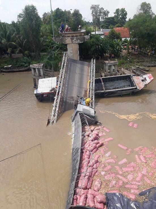 Cầu BOT tại Đồng Tháp bất ngờ bị sập sau 11 năm thu phí - Ảnh 3