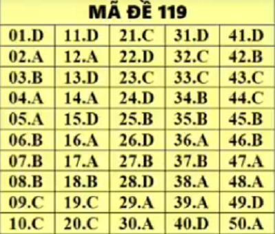 Đáp án, đề thi môn Toán mã đề 119 THPT quốc gia 2019 chuẩn nhất, chính xác nhất - Ảnh 1