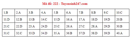 Đáp án đề thi môn Vật lý tất cả các mã đề THPT quốc gia 2019 chuẩn nhất, chính xác nhất (cập nhật) - Ảnh 12