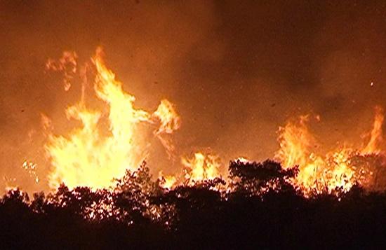 Tiếp tục cháy rừng tại Hà Tĩnh, hàng trăm người căng mình dập lửa - Ảnh 3