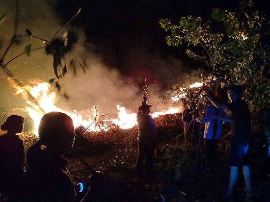 Tiếp tục cháy rừng tại Hà Tĩnh, hàng trăm người căng mình dập lửa - Ảnh 2