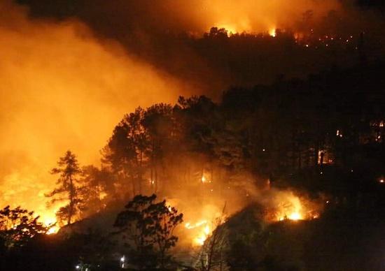 Vụ cháy rừng lịch sử ở Hà Tĩnh và góc khuất số phận vướng vòng lao lý vì bất cẩn - Ảnh 1