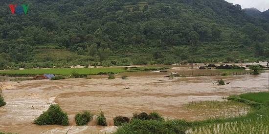 Mưa lớn gây nhiều thiệt hại ở Cao Bằng, hơn 900 ngôi nhà bị ngập lụt - Ảnh 3