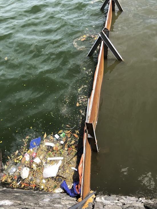 Nước hồ Tây giảm ô nhiễm sau khi được xử lý bằng công nghệ Nhật Bản - Ảnh 2